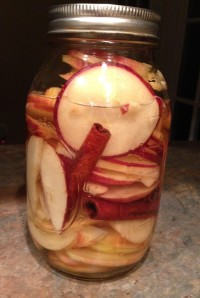 cinnamonapplevodka1