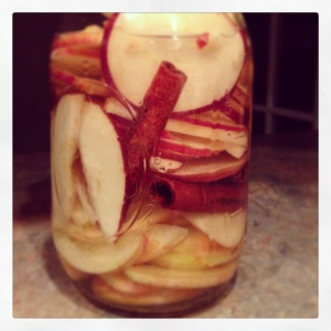 cinnamonapplevodka2