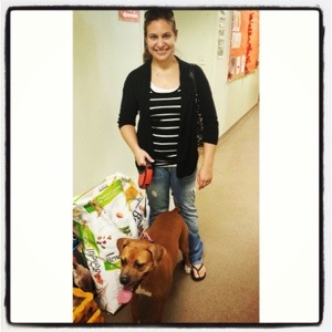 Gemma paying it forward...donating food to the shelter that cared for her until she found her furever family!